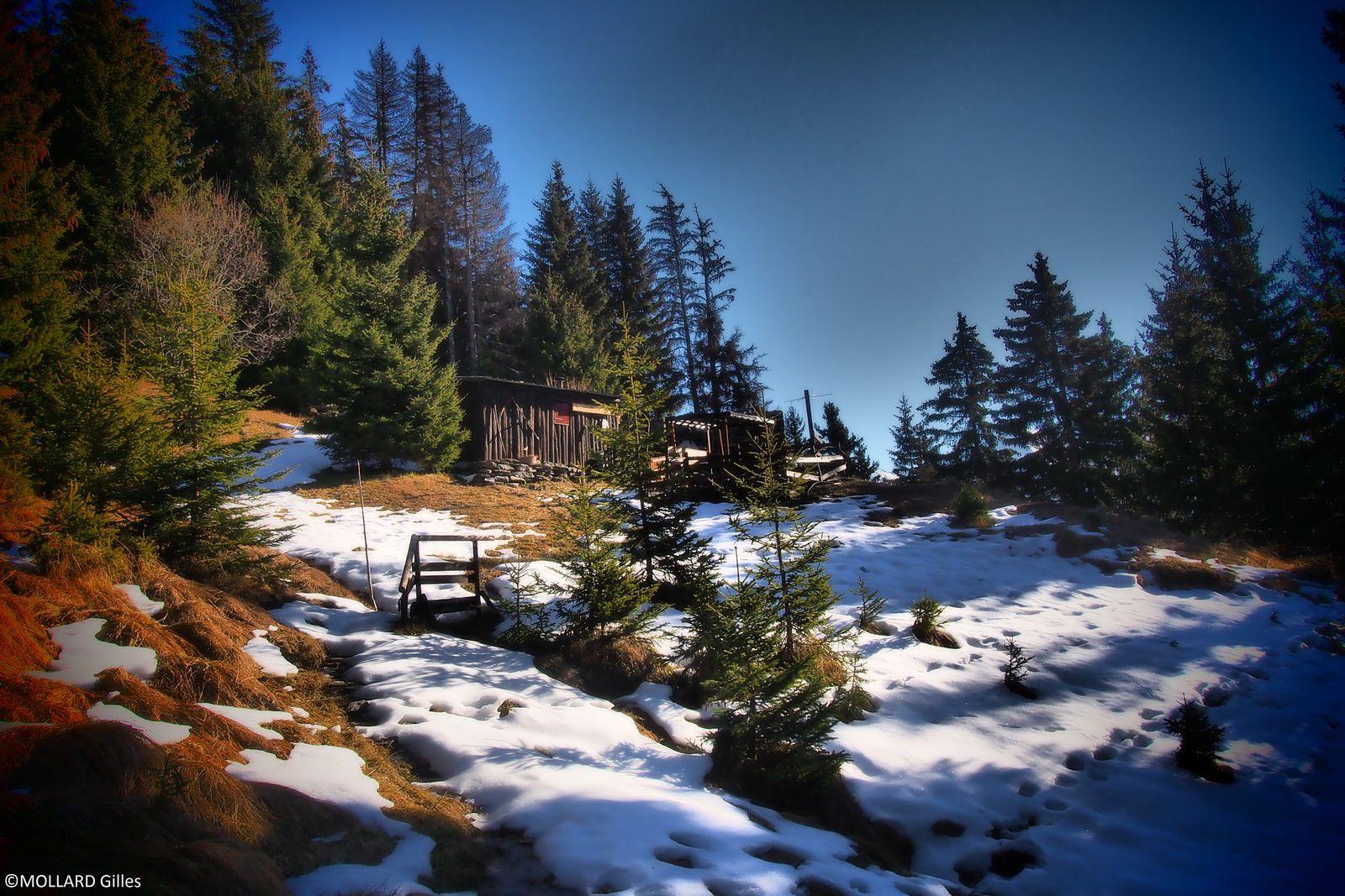 Ballade de décembre,quand l'hiver se fait attendre.