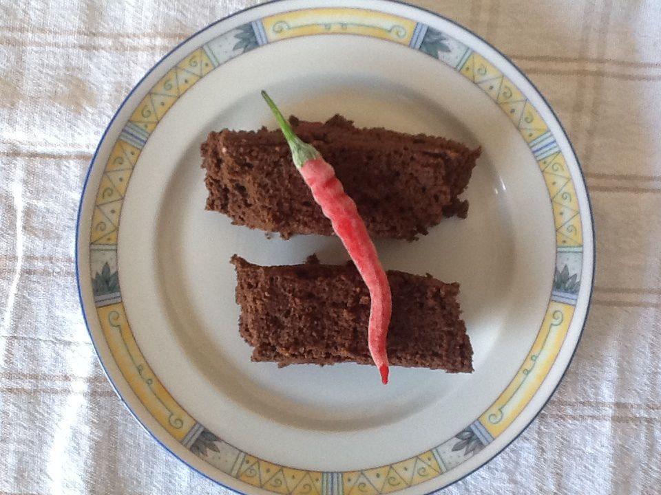 Gateau explosif chocolat, noix de coco et piment d'espelette (sans gluten, sans lactose, sans oeufs) de mon invention