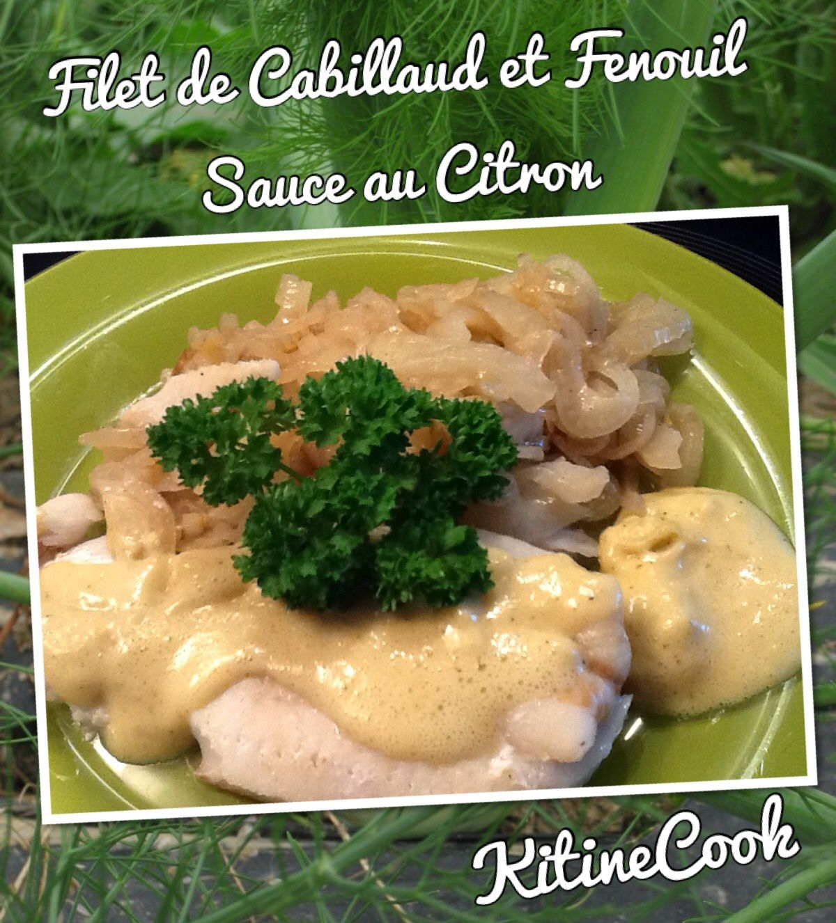 Filets de cabillaud au fenouil sauce citron kitinecook for Cabillaud fenouil