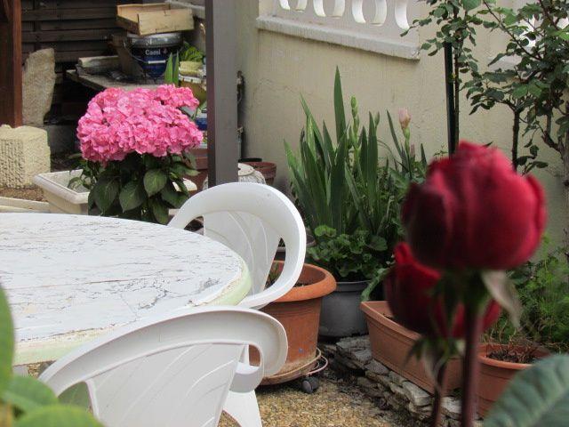 mon jardin 2016  pierrot