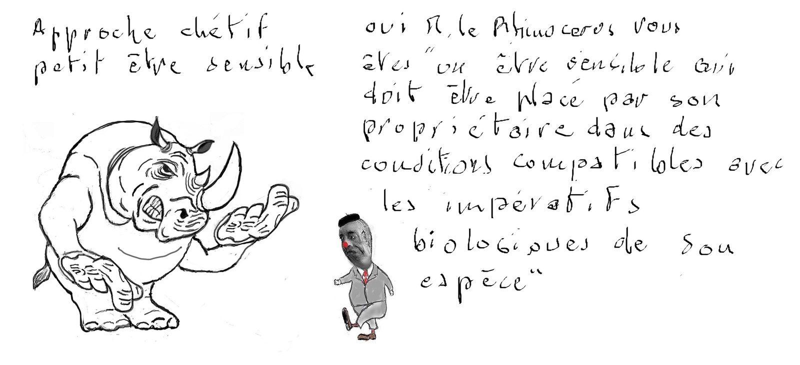 Les animaux en France ne seront plus dans un proche avenir des choses