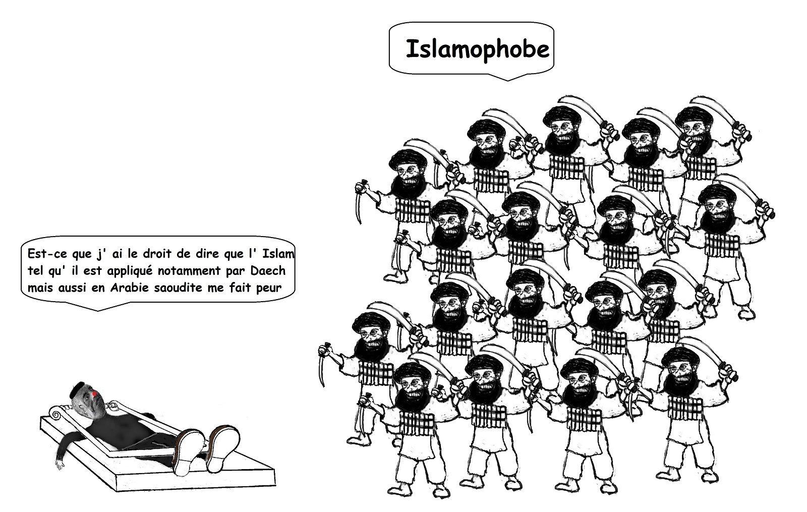 """La prétendue """"islamophobie"""" est une arme utilisée contre notre mode de vie"""