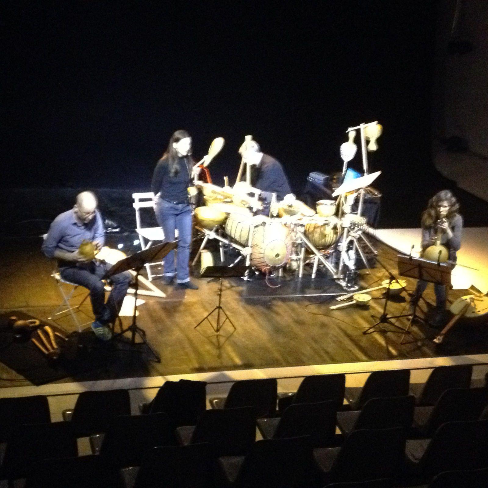 Sonorisation d'un orchestre de cucurbitacés à Lyon