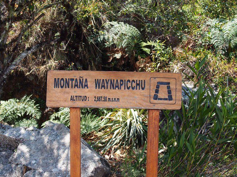 Le sommet du fameux Wayna Picchu pour avoir une autre vue sur le site.