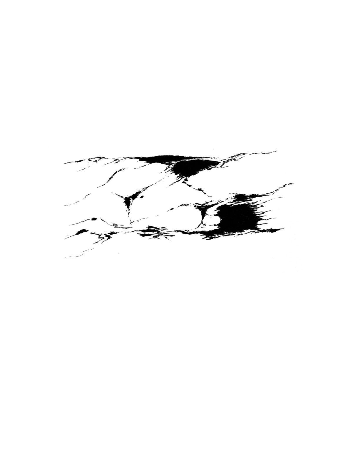 Des fragments de paysage
