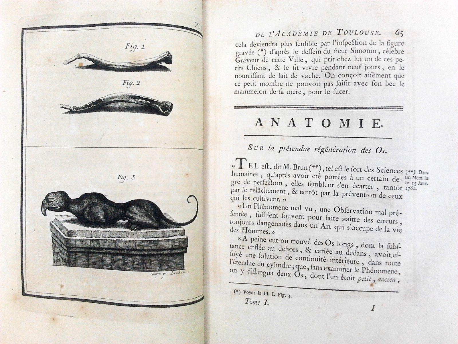 Histoire et mémoires de l'académie royale des sciences, inscriptions et belles lettres de Toulouse