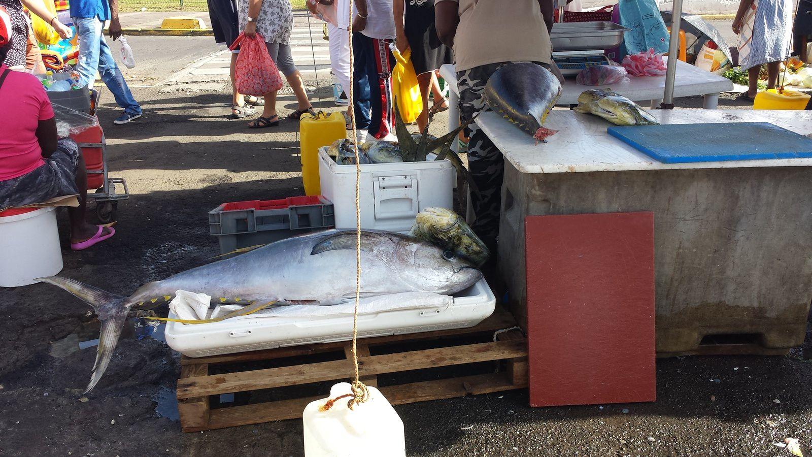 Marché aux poissons de Pointe à Pitre