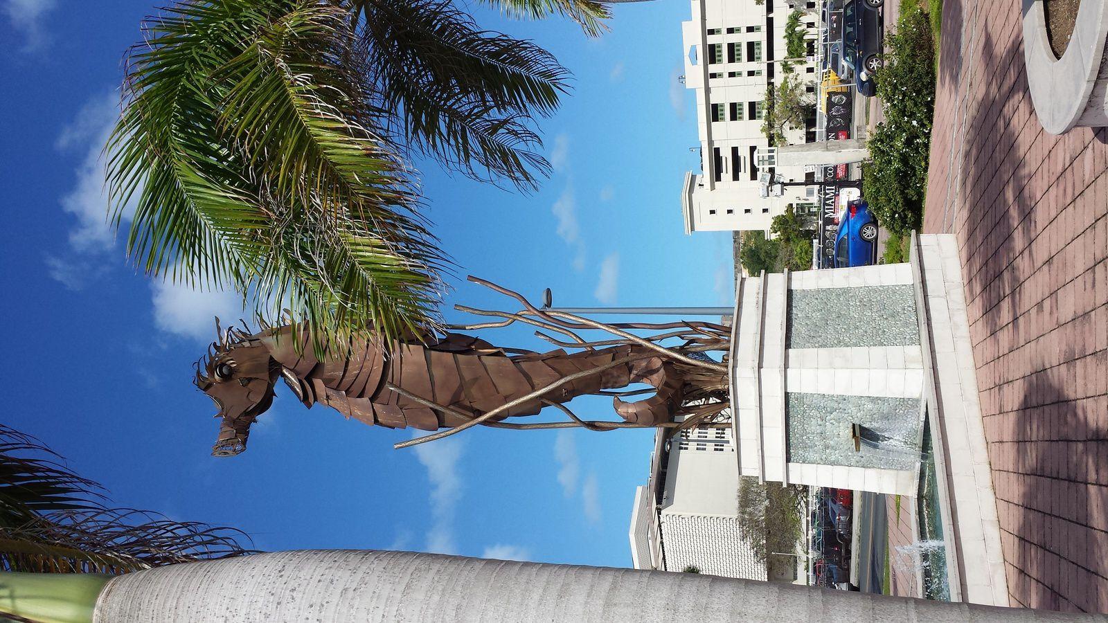 Hippocampe à San Juan en bordure de mer