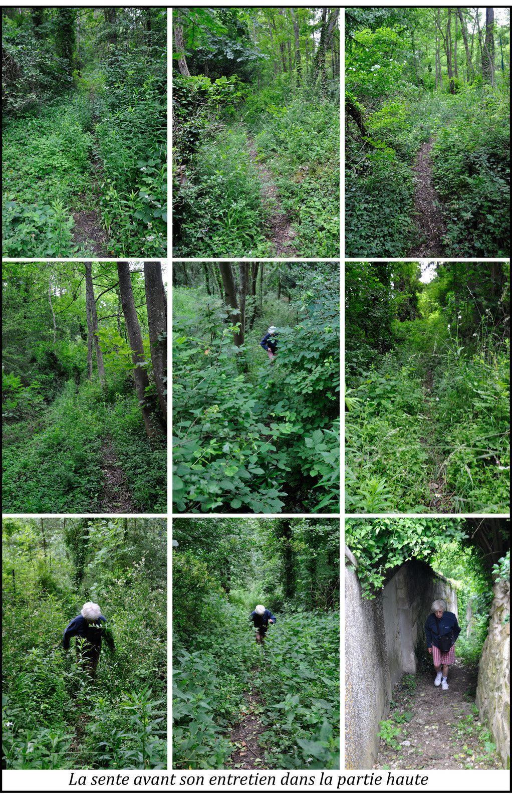 Les grimpettes de Laon