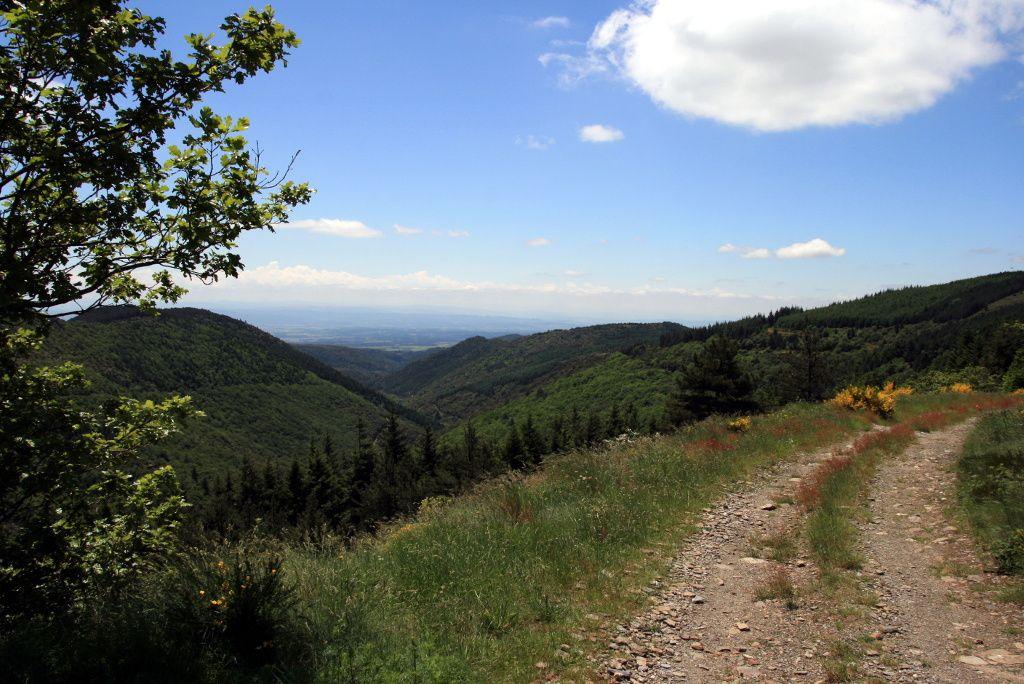 Nos randonnées motorisées en Montagne Noire Sud