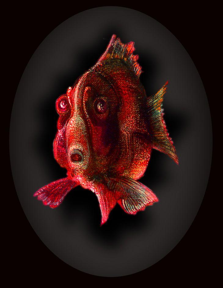 157 - Le cri du poisson rouge