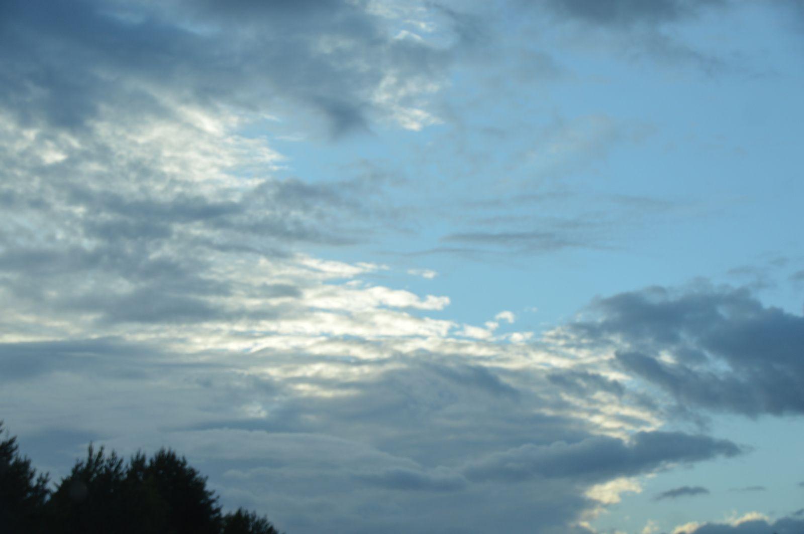 En nous... Le goût de la terre et du ciel mêlés.