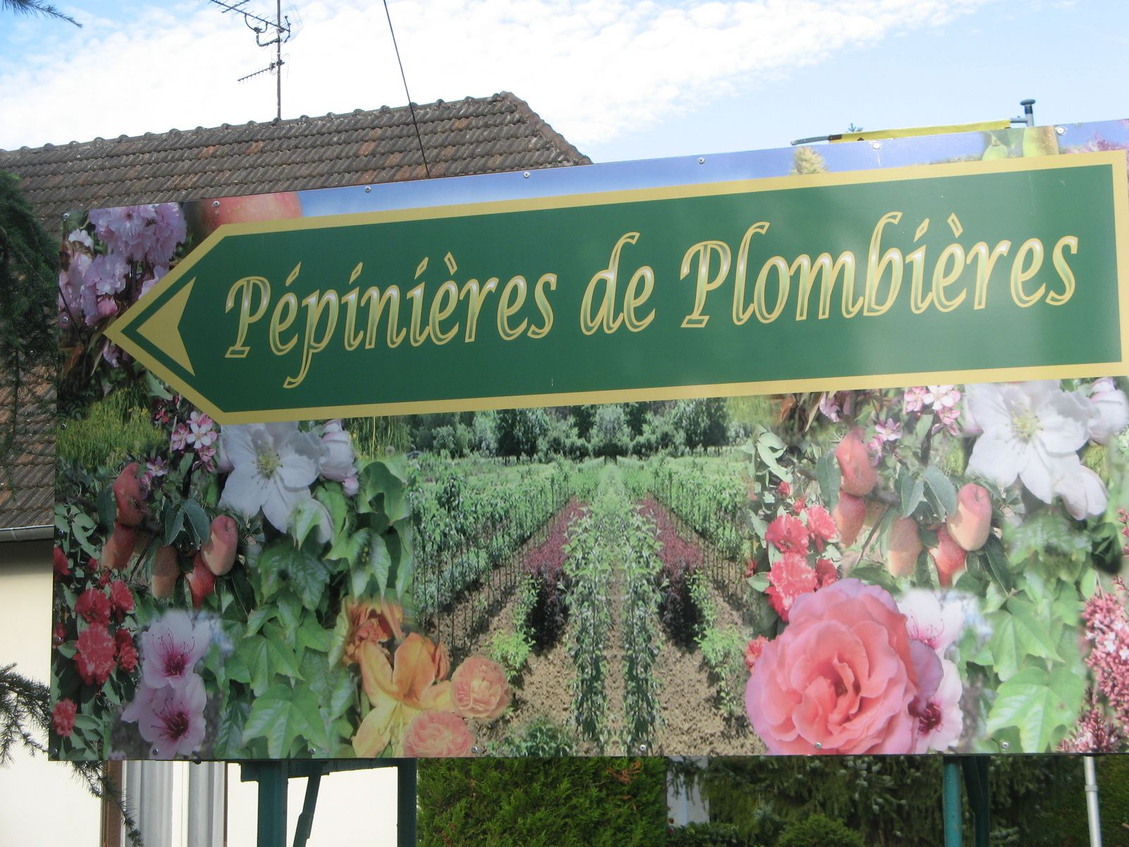 Visite de la Pépinière de Plombières les Dijon