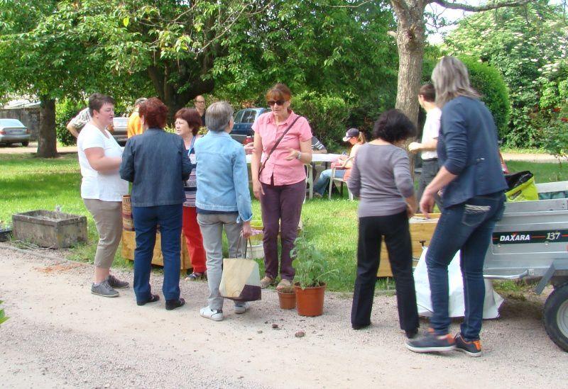 Les incroyables jardiniers se préparent à entrer en action