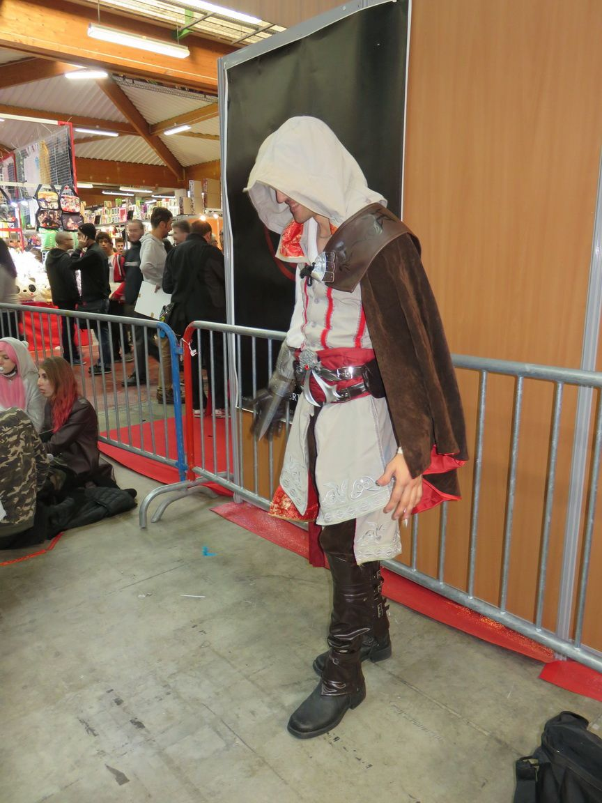 TOULOUSE GAME SHOW 2015: Les cosplayeurs