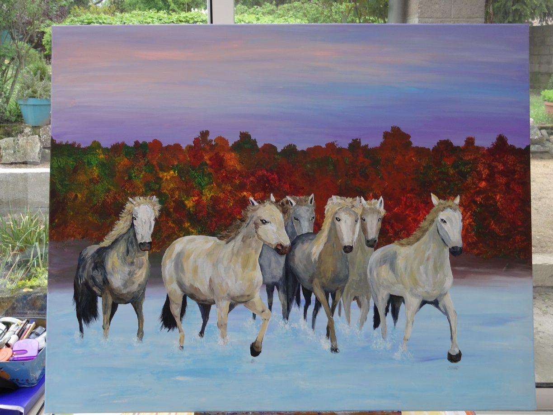 236 - Les chevaux de Mistral