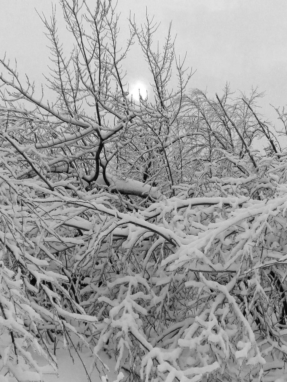 Promenade sur la rivière gelée - Memphrémagog