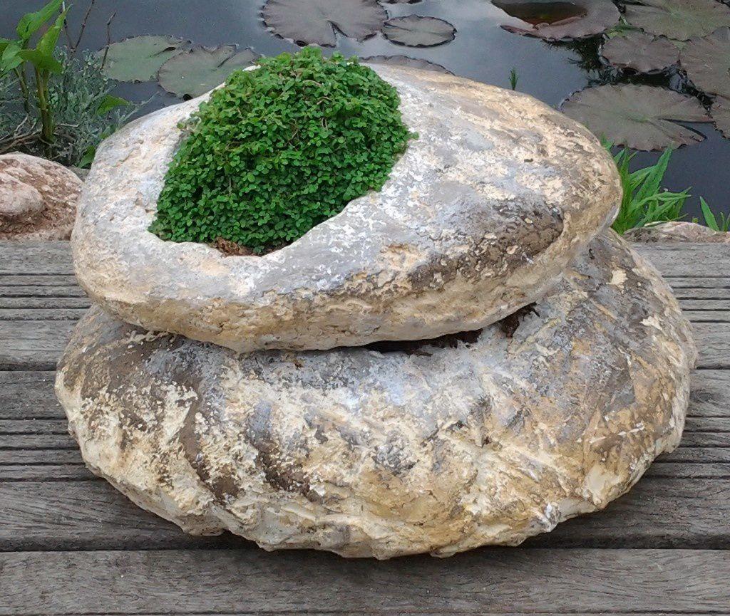Rochers zen dans jardin japonais min ral et vegetal l for Rocher jardin japonais