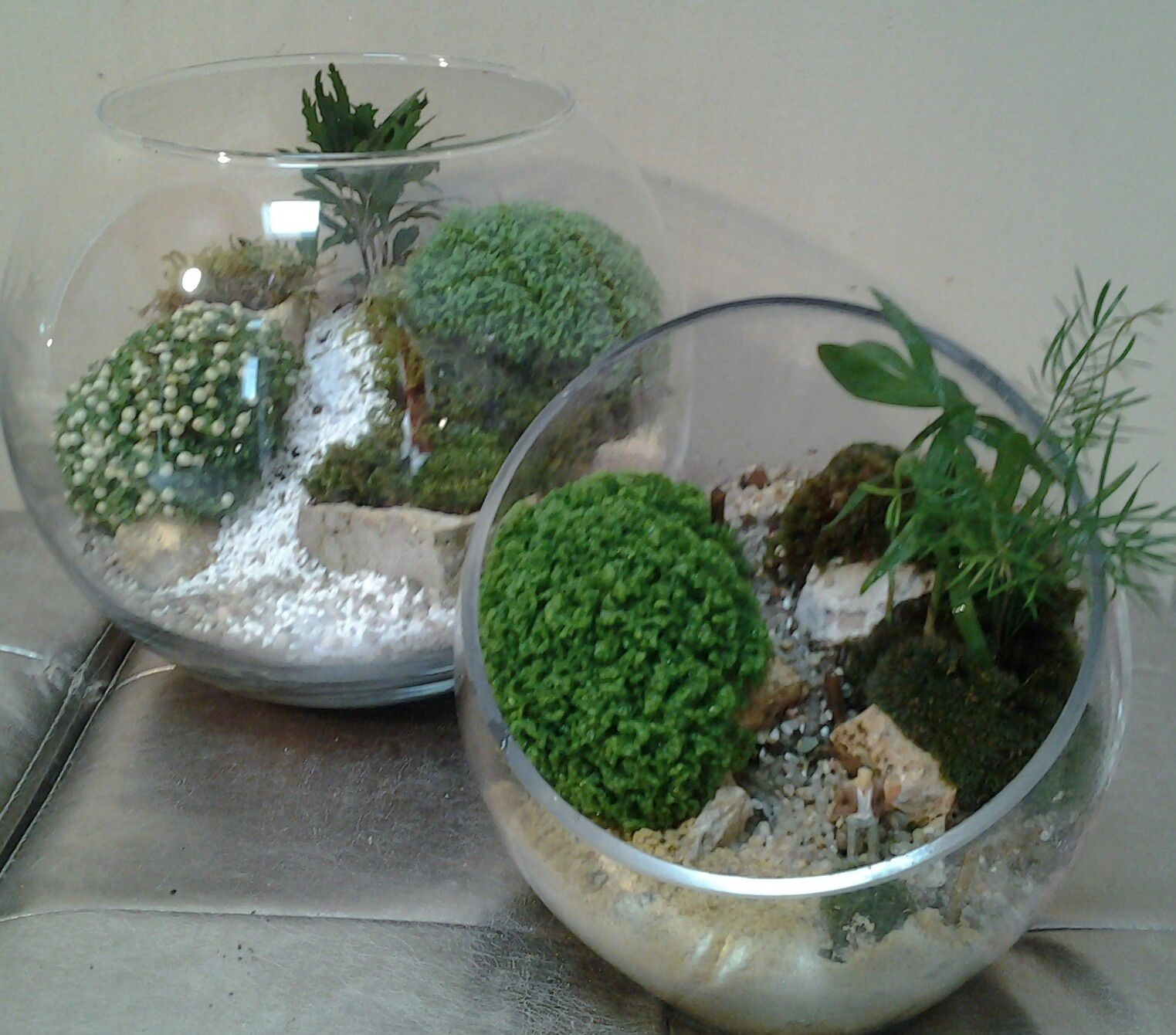 micro jardins de mousse min ral et vegetal l 39 art du terrarium cr atif. Black Bedroom Furniture Sets. Home Design Ideas