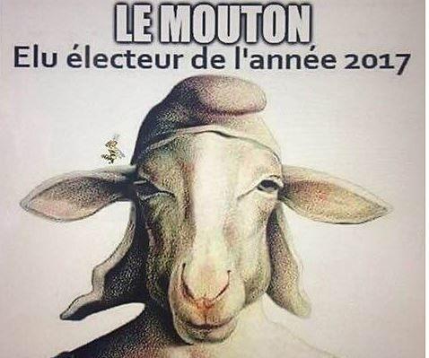 """Si vous pensez être comme cet animal, Dimanche votez Macron """"Monarc""""le Roi des moutons"""