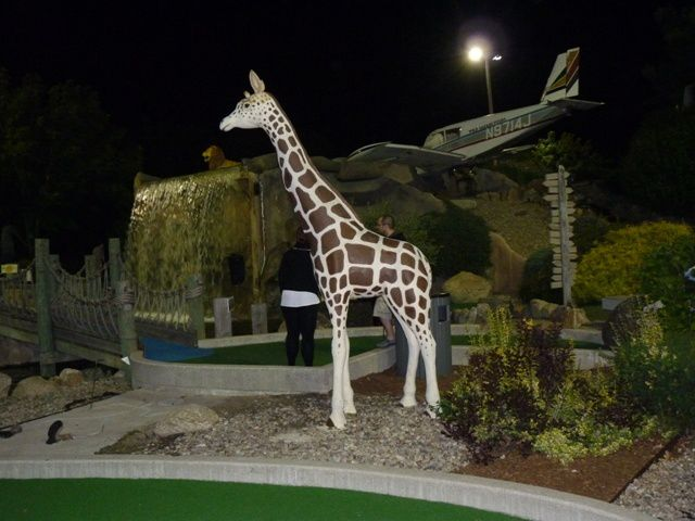 Mini golf : animal lagoon