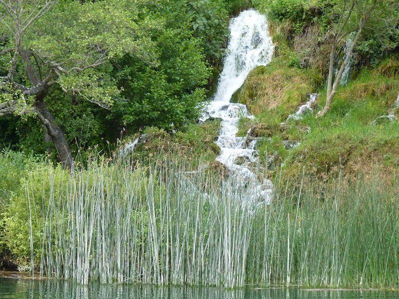 cascade Roski slap