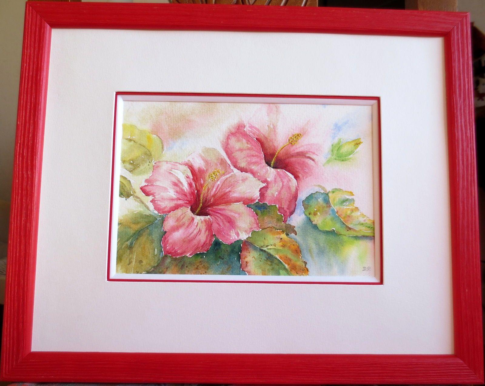 Hibiscus - Aquarelle