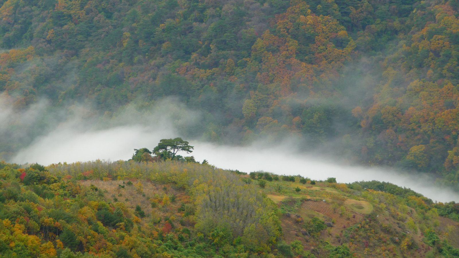 Corée - Cheongnyangsan provincial park