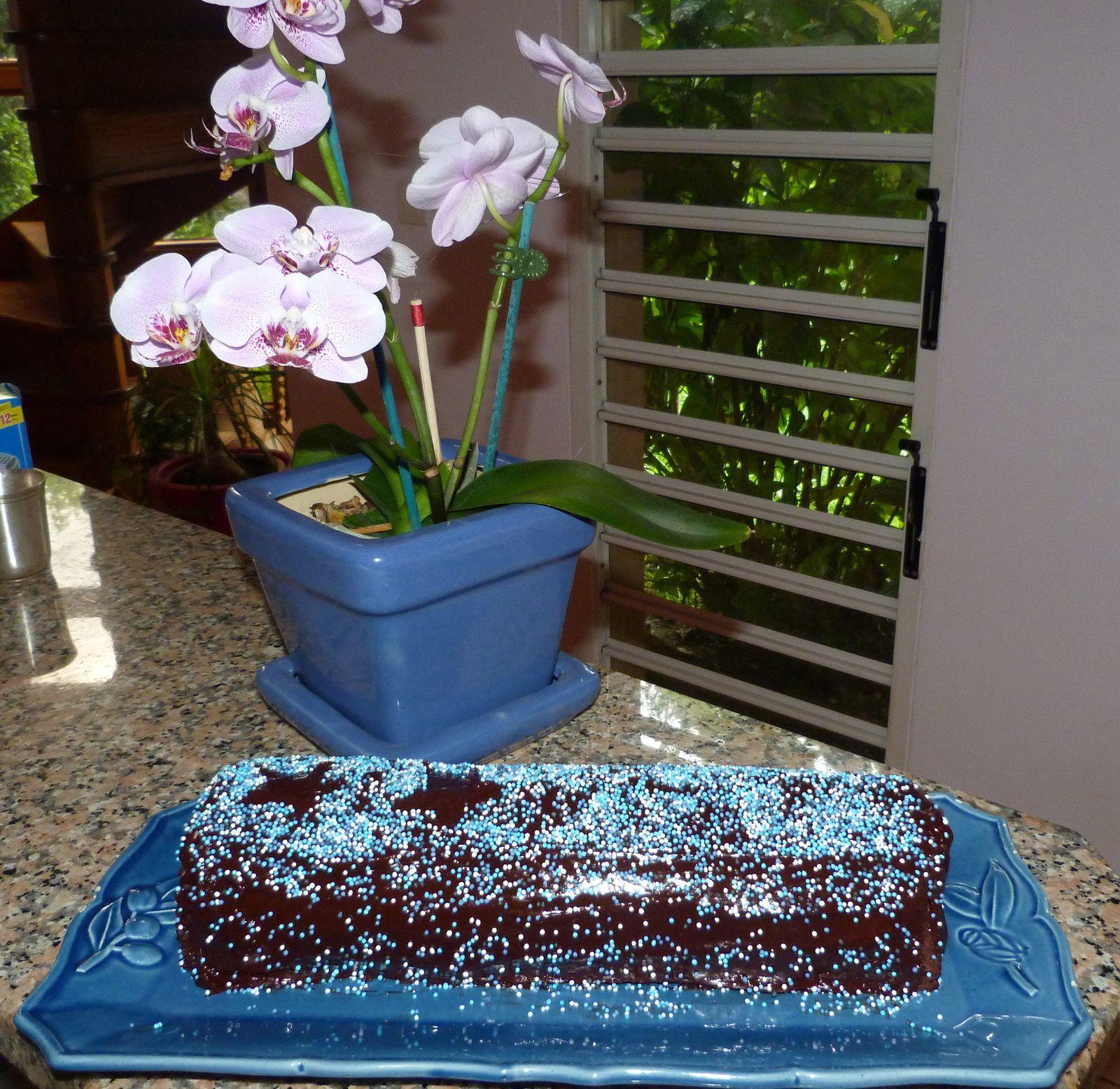 Bûche exquise chocolat- mousse chocolat blanc-fève tonka