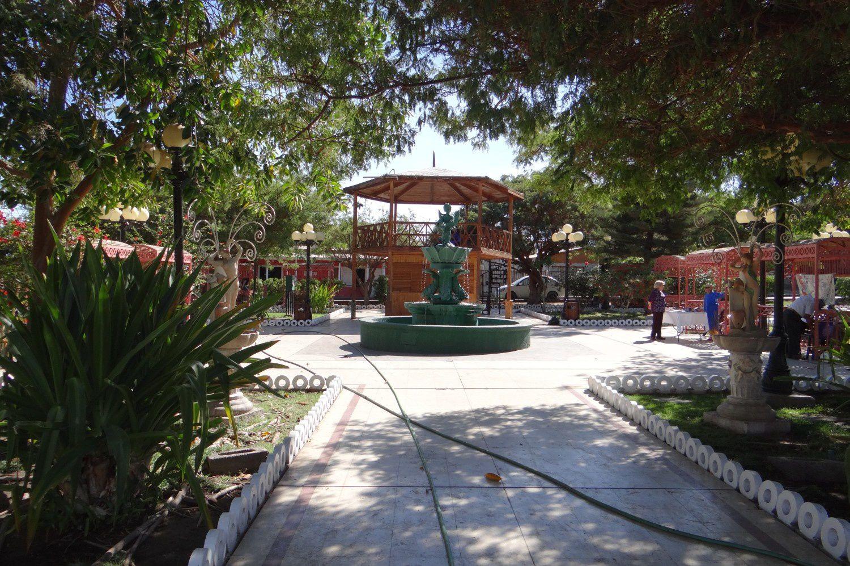 Oasis de Pica (Photos : Eldesiertoflorido).
