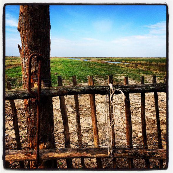 Barrière devant les marais.