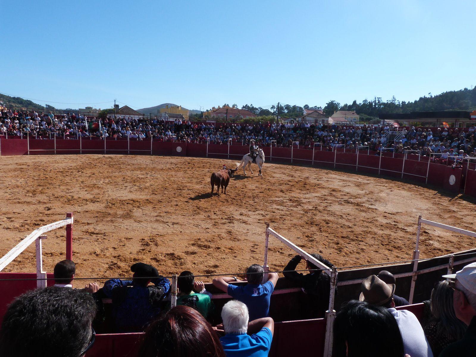 Arène de corrida portugaise