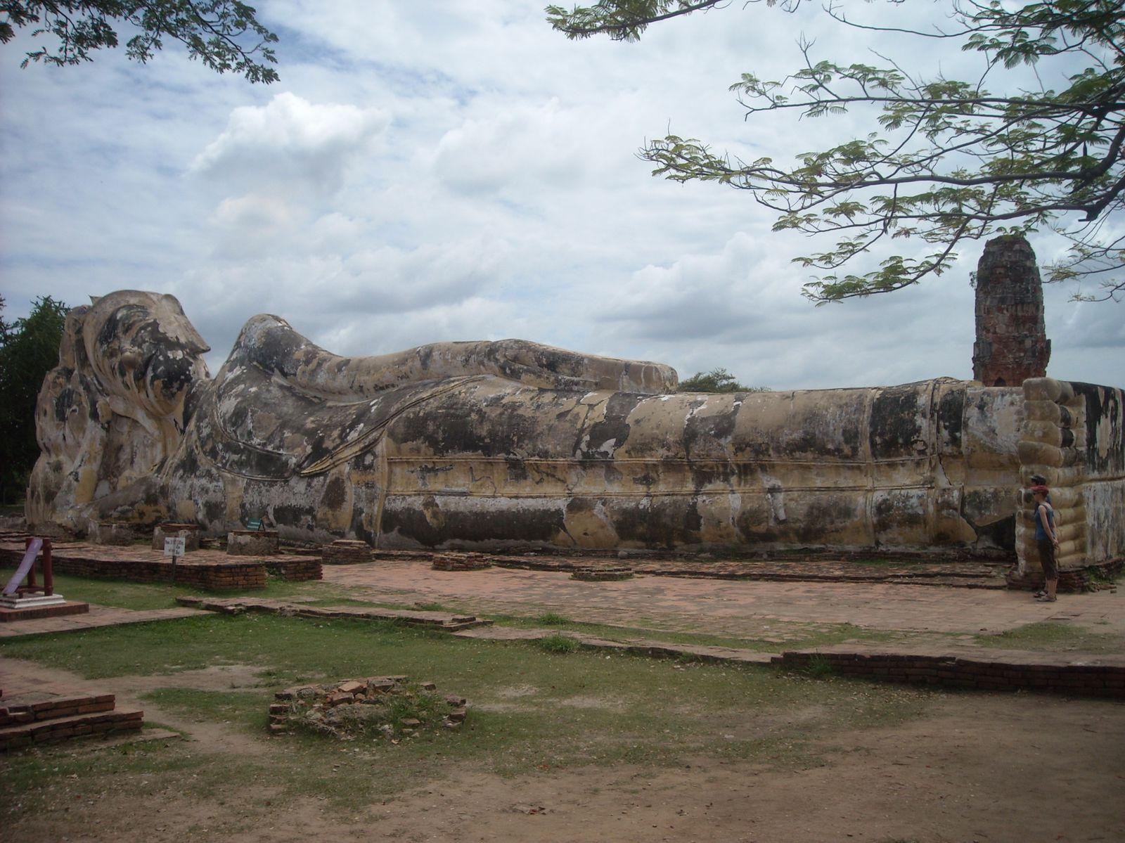 Temples et ruines partout - Toilettes pour femmes et chat - Pixellized me
