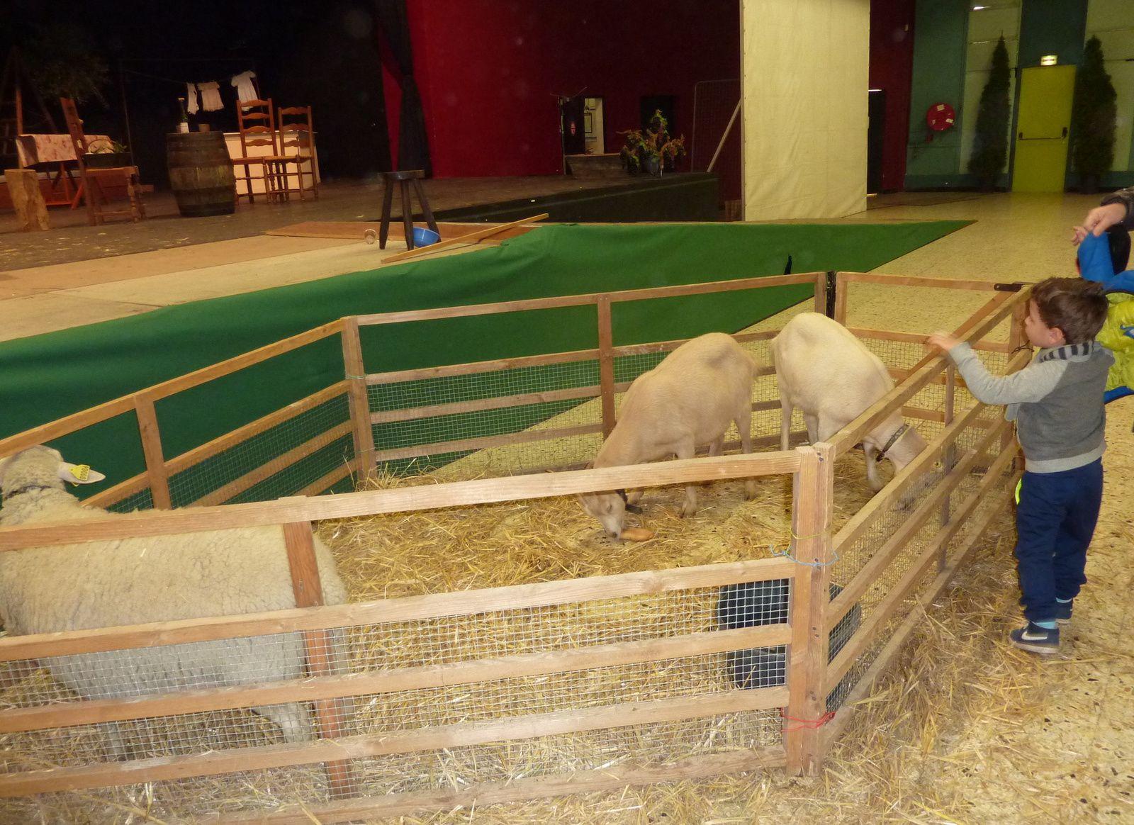 Ci-dessus, les animaux de la ferme pédagogique de l'Oiselet qui sont venus rendre visite aux enfants.