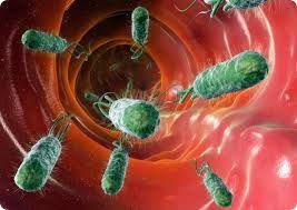 En médecine légale, «microbiome» peut être la nouvelle «empreinte digitale»