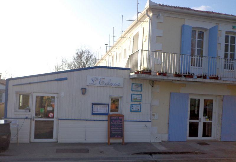 Promenade n° 07 de mars 2016: Estuaire de la Gironde, autour de Cozes...