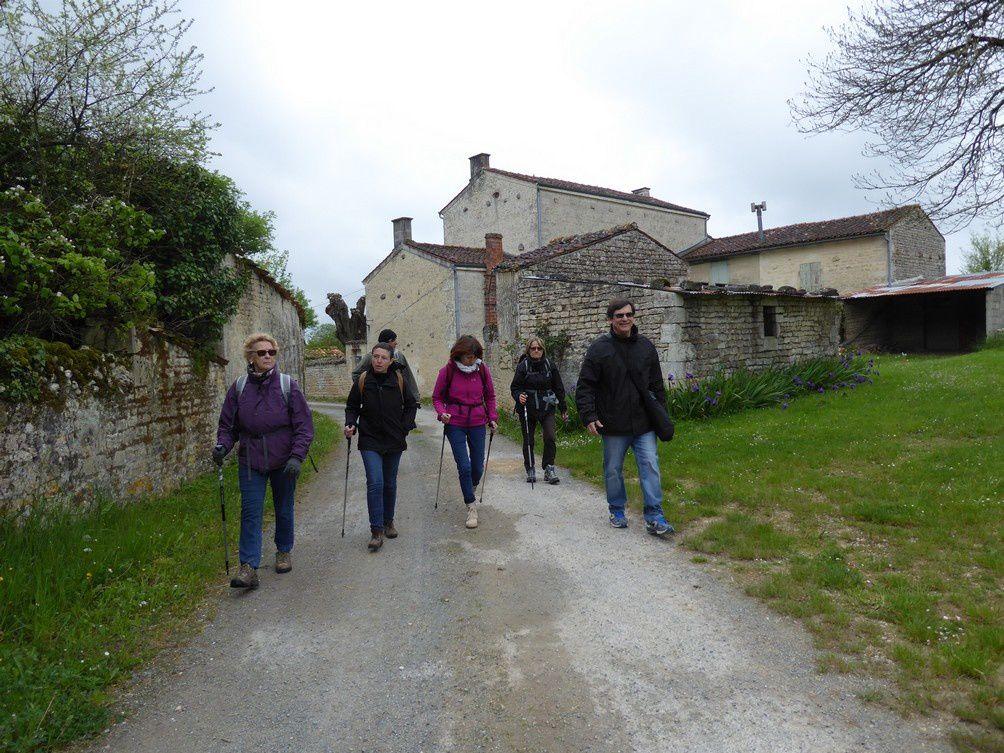Promenade n°08 d'Avril 2016 : forêt domaniale d'Aulnay de Saintonge.