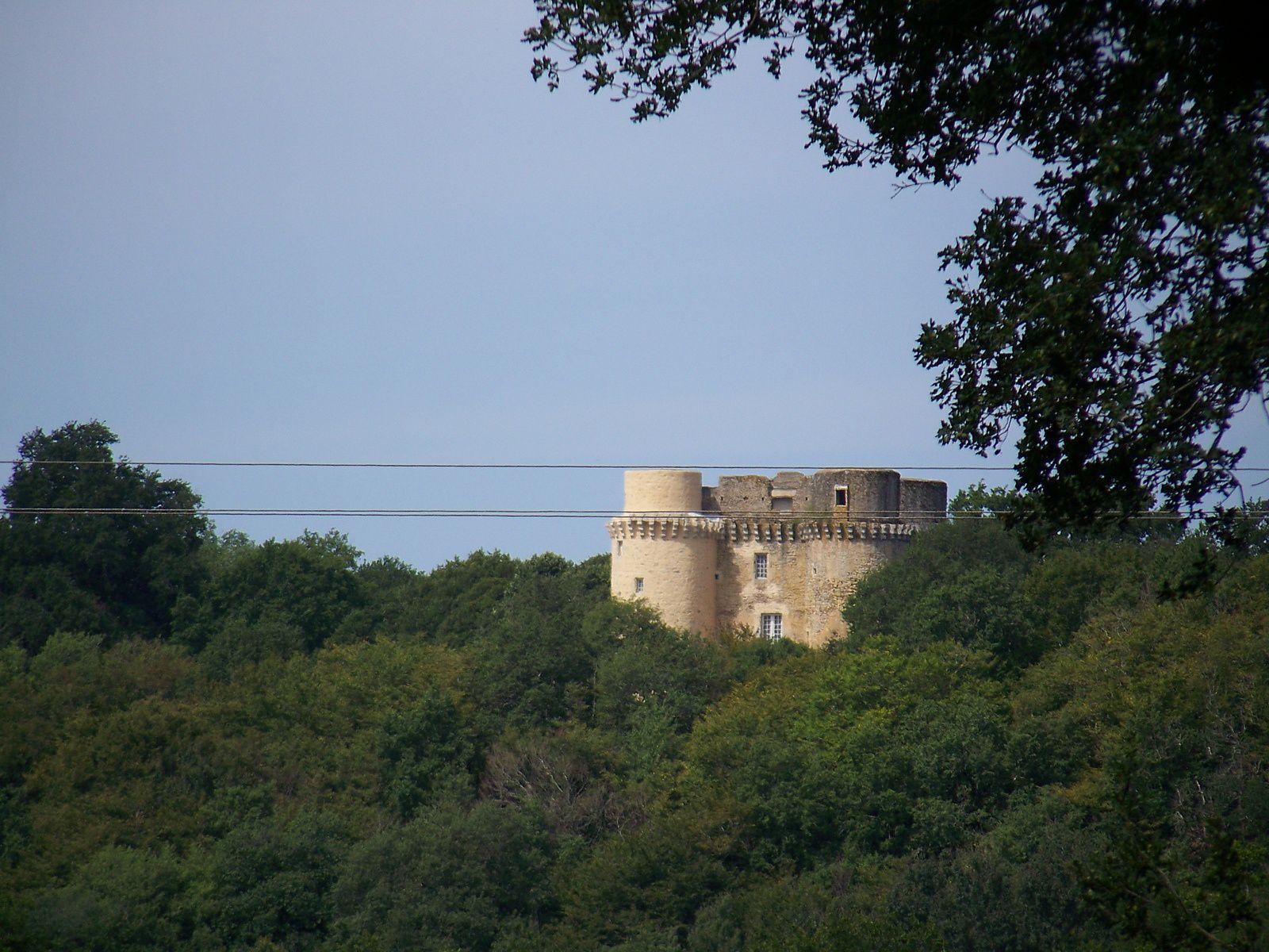 Vallée de la Vienne est ses châteaux .