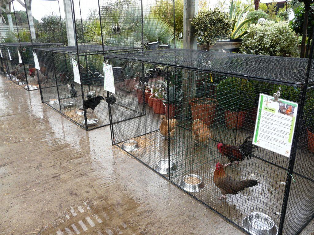 Exposition Jardinerie Villa Verde
