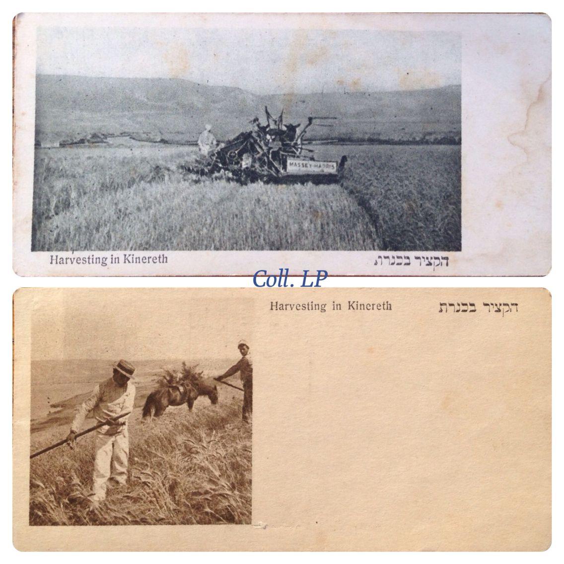 Kibboutz Kinereth année 1910