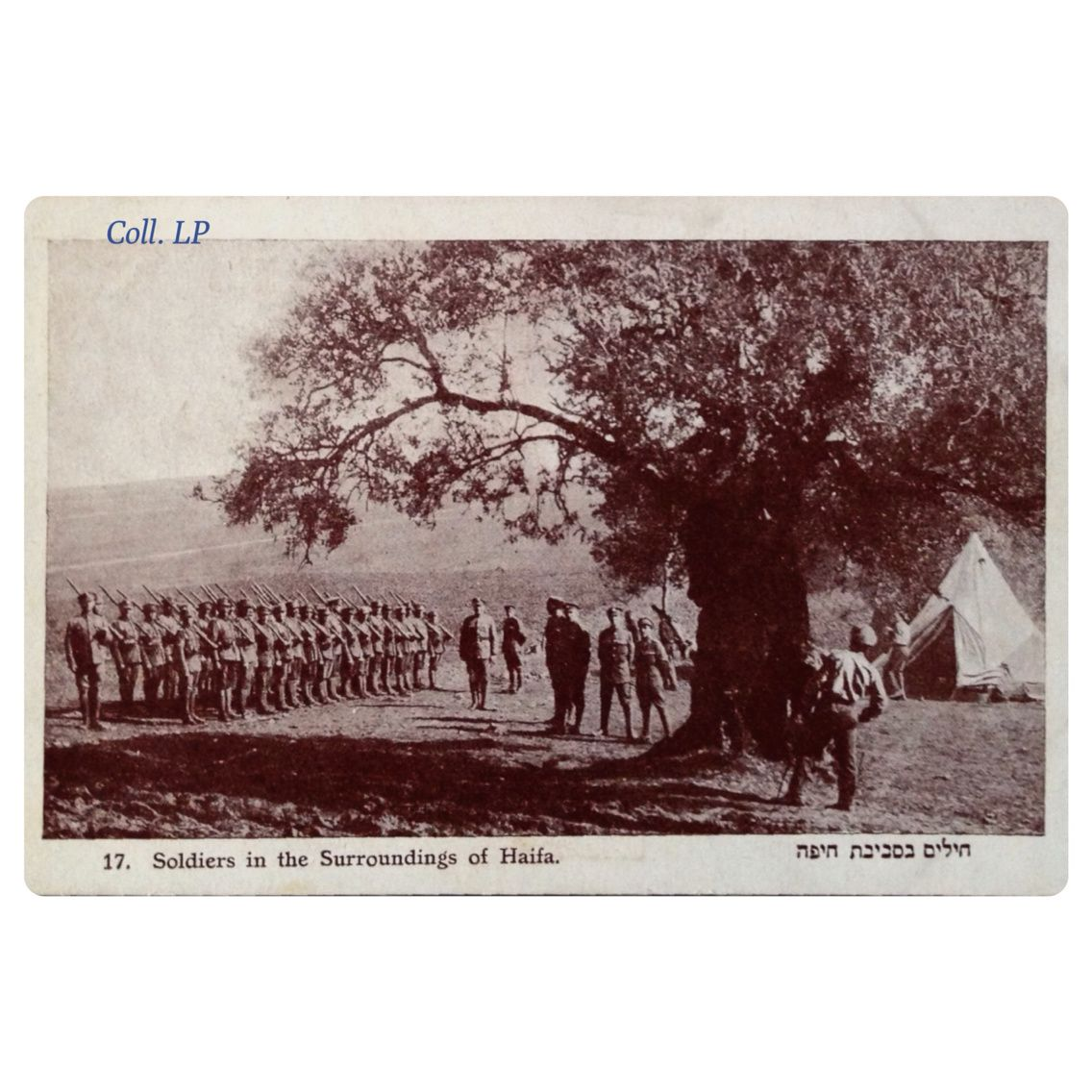 9 cartes postales de la Légion Juive