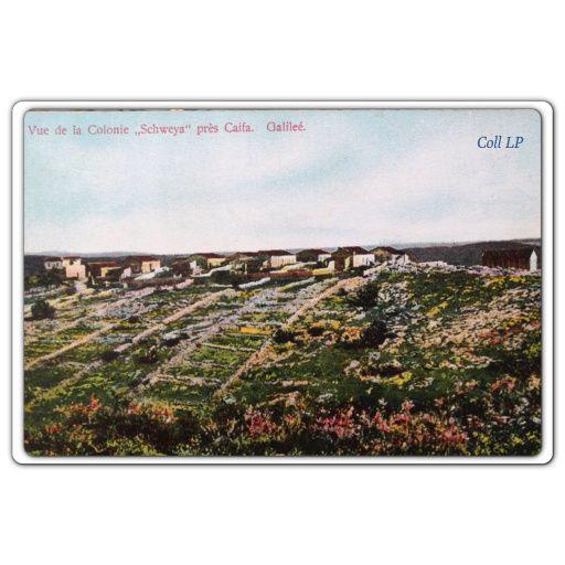 Carte 36:  Vue de la Colonie Schweya près Caifa. Galillée.
