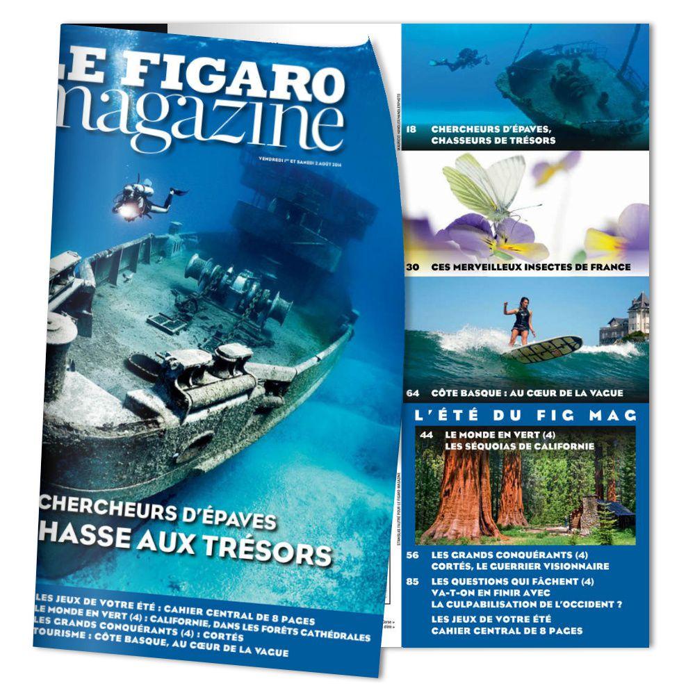 Les insectes à l'honneur dans le Figaro