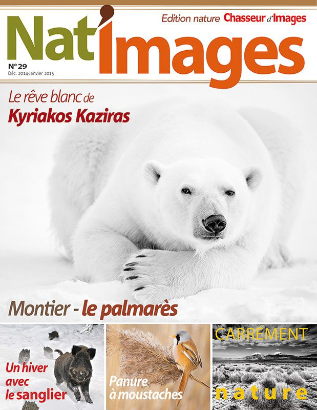Nat'images n°29 : le mag qui a vu l'homme qui a vu l'ours...