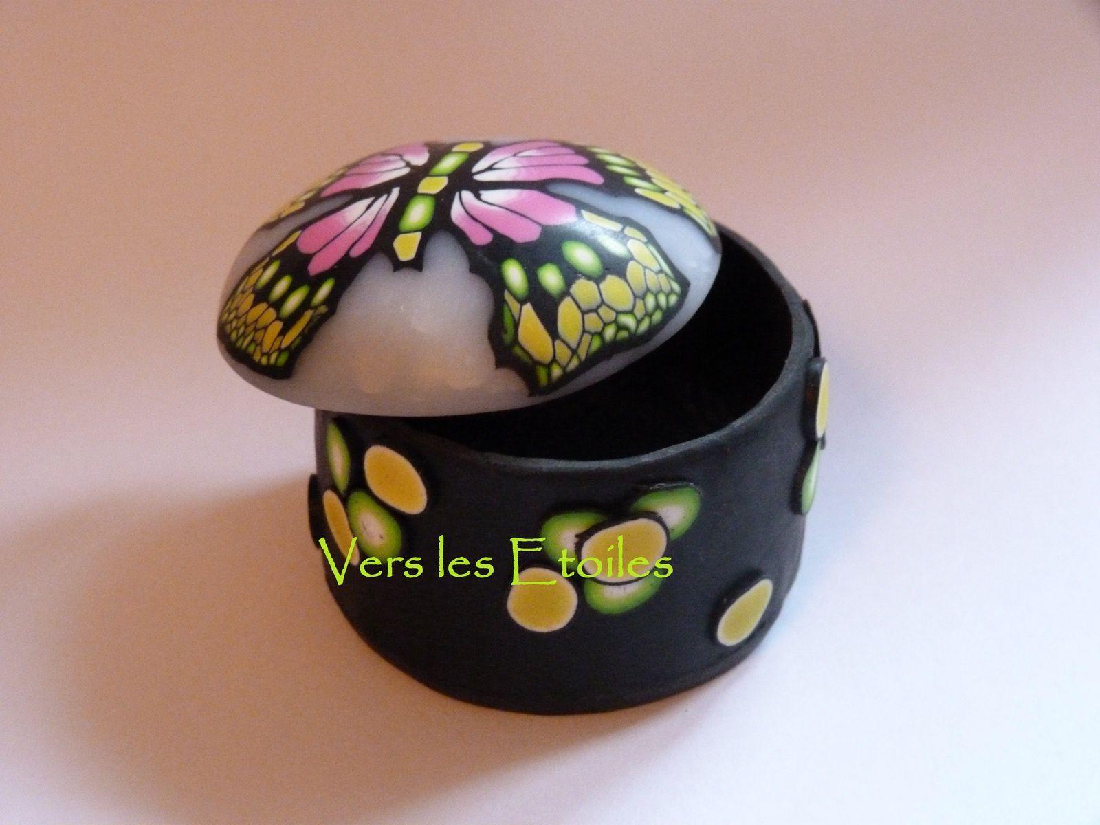 Dans le monde des papillons ...