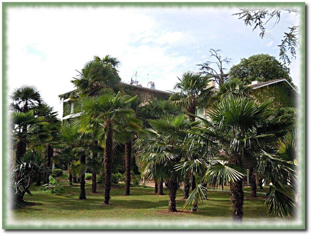 Domaine de Fompeyre, le parc