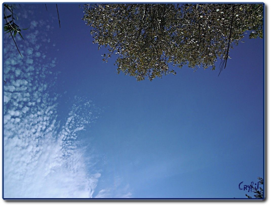 Bleu, bleu le ciel de Provence...