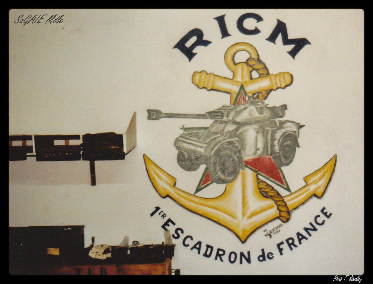 Le R.I.C.M. à 100 ans.