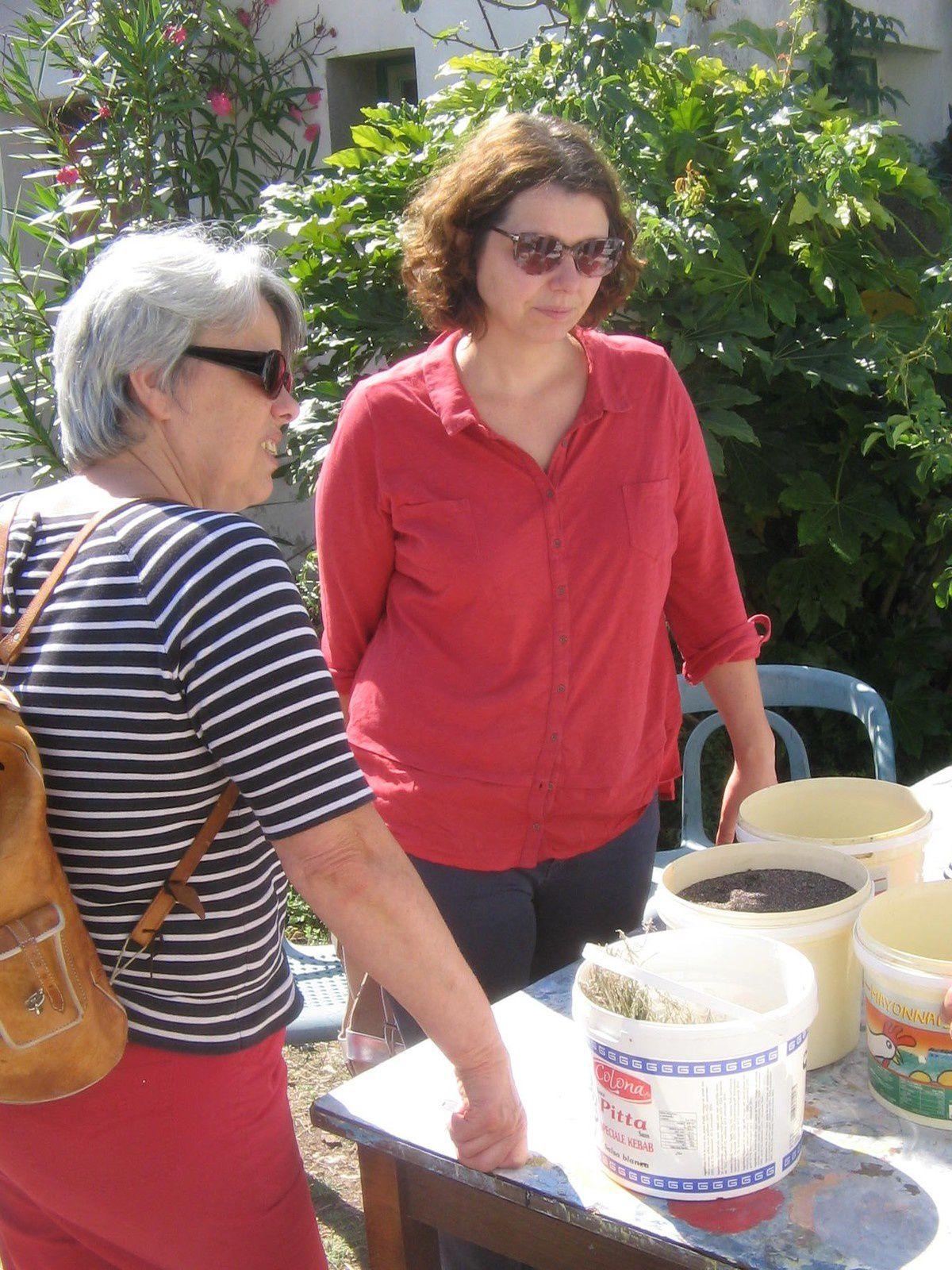 Visite chez Eloi,  notre saunier de l'Île de Ré, 2 et 3 septembre 2017