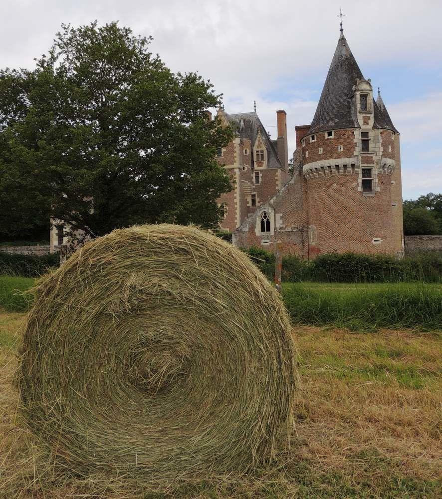 Chateau du Moulin , à Lassay sur Croisne